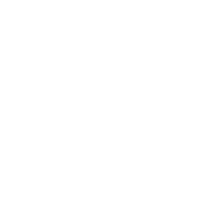 DUAL_Stamp_White-1